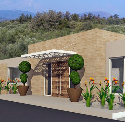 Olive Grove Project